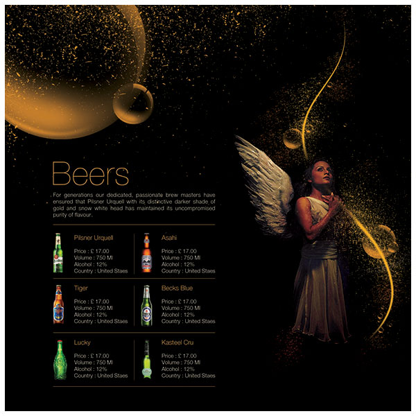 Brochure design with nighlife theme - high quality brochure desi
